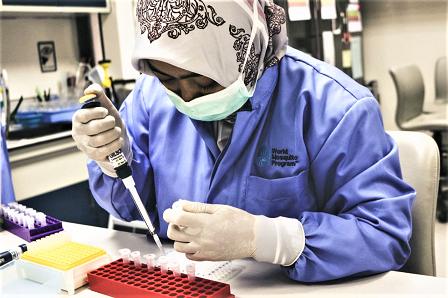 Metode Wolbachia Eliminasi Dengue DBD Di Yogyakarta, Diakui The New England Journal of Medicine